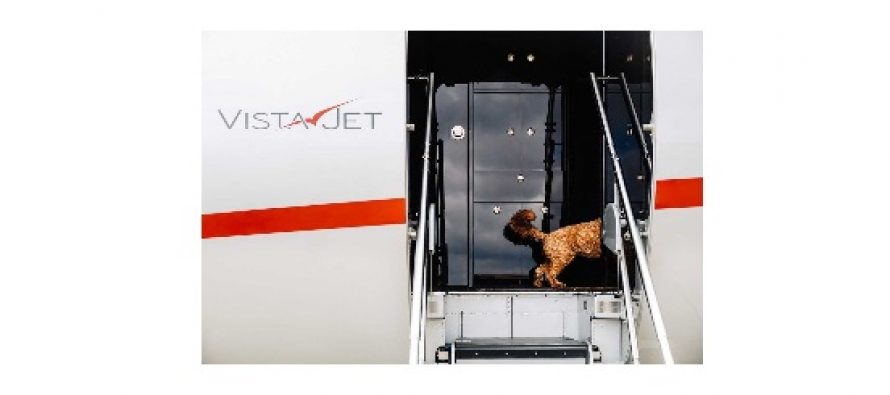 VistaJet launches global pet travel programme as it sees a 104% increase in animals flying